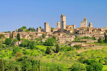 Livorno Landausflug: Privater Tagesausflug nach Siena und San...