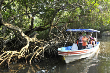 MANDINGA AND BOAT TRIP TOUR