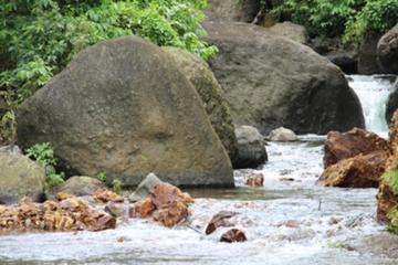 Great Taste of Fiji Sightseeing Adventure