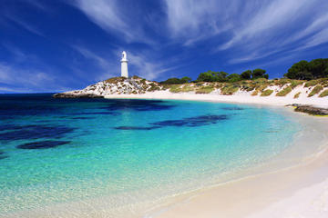 Rottnest Island Round-Trip Ferry from Perth or Fremantle