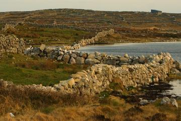 Dagstur till Connemara och staden Galway från Dublin