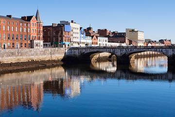 Excursão de um dia ao Castelo de Blarney e a Cork saindo de Dublin