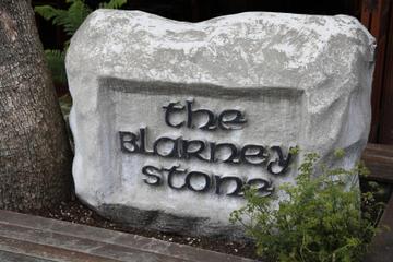 Excursion d'une journée au château de Blarney et à Cork au départ de...