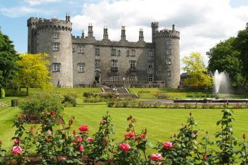 Escursione di un giorno nella città di Kilkenny e a Glendalough da