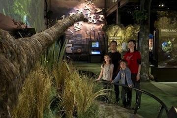 Zealandia: l'exposition et la vallée...