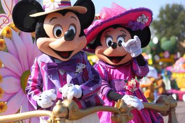 Disneyland Paris-billet: 1 dag, 2 parker