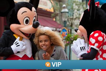 Viator VIP: Disneyland Paris with Premium Fastpass and Exclusive Dinner Experience
