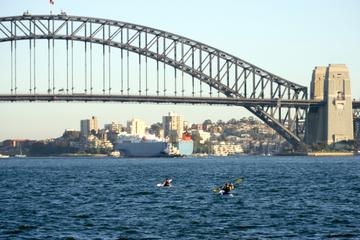 Excursões de caiaque no Porto de Sidney