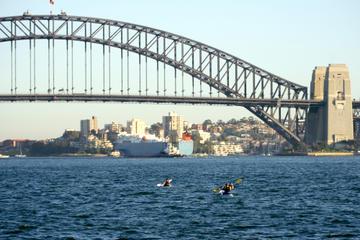 Tour del puente del puerto de Sídney