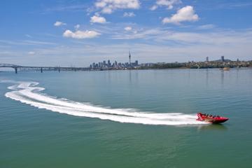 Excursão terrestre de Auckland: passeio de barco a jato no Porto de...