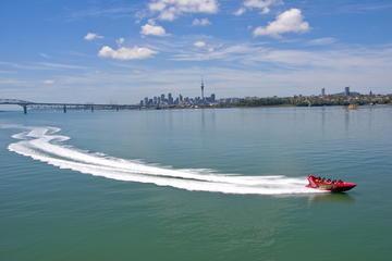 Excursión por la costa de Auckland: paseo en lancha motora en puerto...