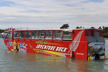 Tour de Auckland en vehículo anfibio