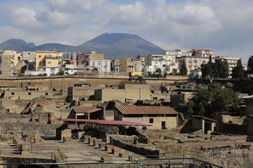 Herculaneum & Vesuvius Walking tour from Naples