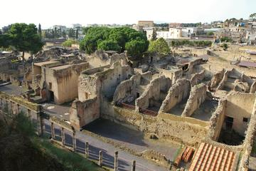 Herculaneum Walking Tour from Naples