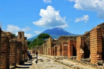 Pompeii & Vesuvius Walking tour from Naples