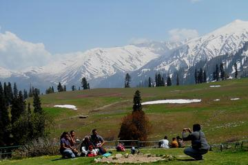 Private 5-Day Kashmir Package Tour from Srinagar