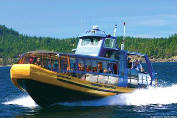 Walvissen spotten vanuit Vancouver