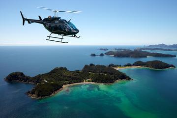Baía das Ilhas Excursão Terrestre: passeio de helicóptero incluindo...