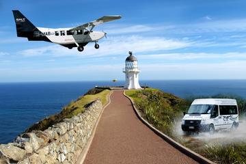 Excursión de medio día a Cabo Reinga incluyendo vuelo panorámico