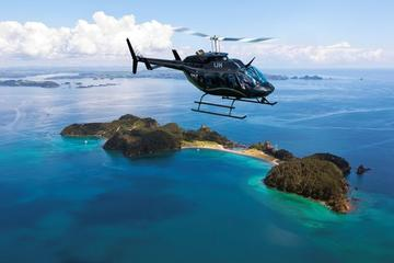 Recorrido en helicóptero por Bay of Islands y Hole in the Rock