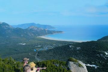Excursão de 2 dias à Phillip Island e Península Wilsons saindo de...