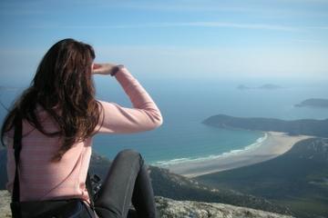 Excursão de um dia à Península Wilsons saindo de Melbourne