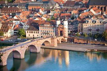 Excursão de meio dia a Heidelberg a...