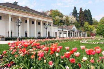Tagesausflug von Frankfurt zum Schwarzwald und nach Baden-Baden