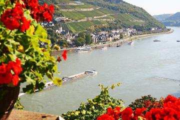 Trip door de Rijnvallei vanuit Frankfurt inclusief cruise op de Rijn