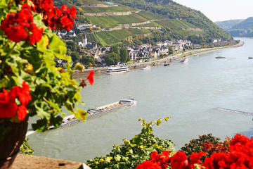 Valle del Rin desde Fráncfort, con crucero por el río Rin