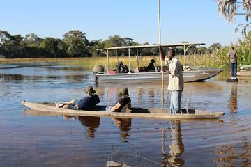 One Day  Mokoro Safari