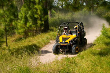 Offroad tour met duinbuggy