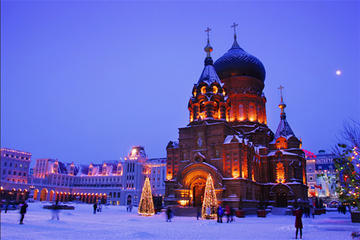Private Day Tour: Harbin City and Ice and Snow World