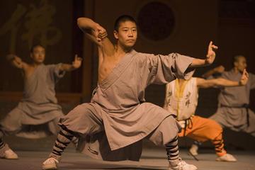 Visite privée: dîner pékinois et spectacle de kung fu chinois
