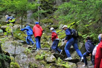 Day Trip Skagway Shore Excursion: Chilkoot Trail Hike and Float Tour near Skagway, Alaska