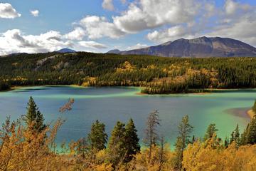 Skagway Landausflug: Ganztägige Tour im Yukon Territory
