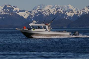 Excursão ao litoral de Juneau: viagem...