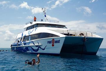 Deep Sea Divers Den: ReefQuest Premium Great Barrier Reef Diving and...