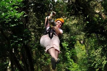 Excursión por la costa Roatán: Excursión de Canopy Zip 'n' Dip
