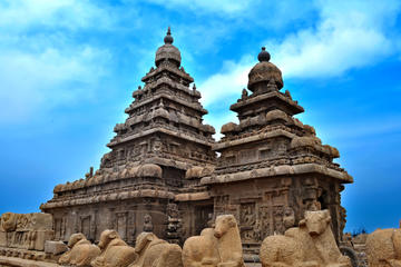 Private Cultural Tour: Day Trip to Mahabalipuram and Dakshinachitra...