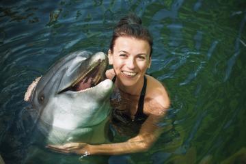 Baño con delfines en el Parque Nacional Chankanaab de Cozumel