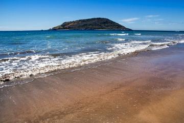 Excursión por la costa de Mazatlán: Excursión de aventura a la Isla...