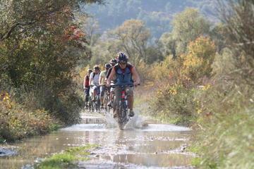 Excursión en bicicleta por valle Konavle para grupos pequeños desde...