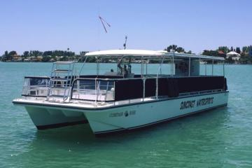 Day Trip Sand Dollar Island Dolphin Tour near Saint Petersburg, Florida