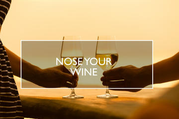 Nose your Wine
