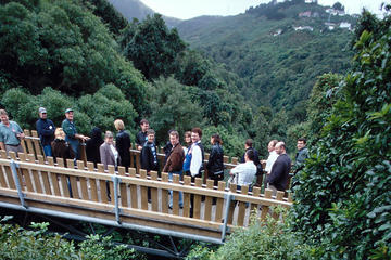 Otari Eco Trek - Half Day