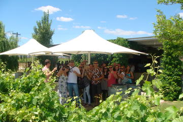 Swan Valley Winery Experience - Full Day Coach Tour