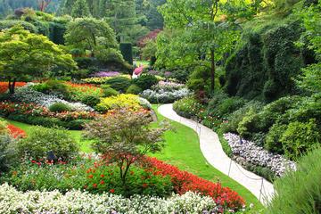 Viagem diurna aos jardins de Victoria e Butchart saindo de Vancouver