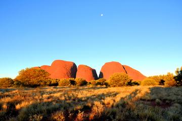 3-Day Ayers Rock, Olgas and Kings...