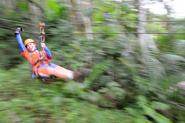 Full-Day Zipline and Waterfall...